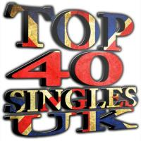 The Official UK Top 40 Singles Chart [2014.01.05]